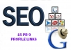 15PR9 and PR10 Domain backlinks for your Website