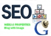 Do 30 High Quality Web2.0 Blogs with proper image and video