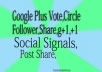 Provide 200 google plus vote to your website blog video page or 200 google plus circle follow