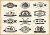 I will create a multipurpose Retro Vintage Stamp
