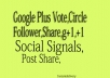 Get 307+ USA VERIFIED Google PLS One G+1 Vote Likes