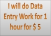 I will do Data Entry Work for 1 hour for