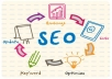 I will review your website with full seo solution
