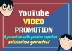NON DROP AND HIGH QUALITY YOUTUBE VIDEO PROMOTION