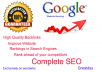 I will rank your website higher in Google with Best SEO