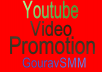 Youtube Video Promotion Drip Feed Daily