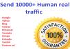 I will Drive 10000+ human traffic from Google, yahoo Etc.
