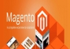 I will build a Magento store or do maintenance