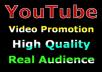 Youtube Marketing Safe Video Promotion Real Via User