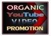 Organic Youtube Video Marketing Seo Ranking Promotion