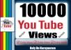 10000+ High Quality Youtube Safe Views Get