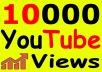 Get-10000-YouTube-Views-Bonus-Likes-with-High-for-13-12