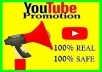 Organic Youtube Video Safe Social  media  marketing  promotion