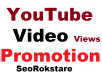 Organic YouTube Video Promotion & Social Media Marketing