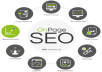 On Page SEO Optimization for you