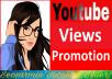 YouTube Video Promotion Marketing Social Midia