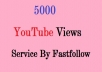 give-you-5000-real-Indian-Human-youtube-video-view-for-5