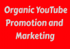 YouTube Organic Promotion and Marketing Only