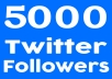 Fast-5000-Twiter-FolIowers-High-quality-Perman-for-30-25