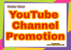 Permanent YouTube Promotion Never Drop And Gurantee