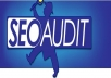Provide expert SEO Report Plan, Competitor Analysis and Audit.
