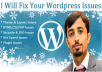 I will fix your Wordpress Issues
