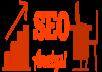 Professional SEO Audit Report