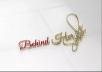 Design an Artistic and FEMININE Signature Logo