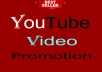 YouTube Video Ranking & viral Promotional Service