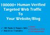 Drive-100000-TARGETED-Human-Traffic-To-Your-Blog-Fro-for-20