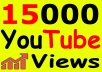 Get-15000-YouTube-Views-Bonus-Likes-with-High-for-20-18