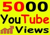 Get-5000-YouTube-Views-Bonus-Likes-with-High-R-for-7-6