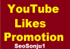Organic Video Promotion and marketing Complete in 24 Hours