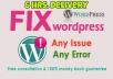 Fix WordPress error fast (6 hour)