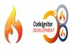 codeigniter website design bug fixing 10 hours