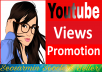 Safe Youtube Video Promotion Non Drop Instant Start