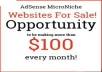 Micro Niche Adsense Websites For Sale.