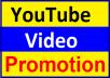 Instant YouTube Video Promotion & Social Media Marketing