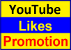 Manually Video Basic Likes Promotion Instant Start