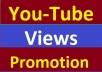 YouTube Video Promotion Fully Safe Within 6 Hours Delivery