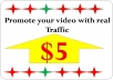 I-Promote-your-video-with-real-traffic-and-rank-on-go-for-7