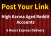 Submit Your Link in Reddit from 10k+ karma account within 6 Hours