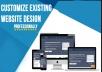 Customize Existing Website Design Professionally