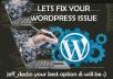 Fix Wordpress Issues Or Wordpress Errors In 12 Hrs
