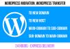 Do wordpress migration, wordpress transfer