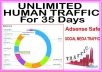 Get UNLIMITED targeted organic web traffic for 35 days from main search engines & social site