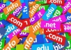 Domain Name registrations/ website name