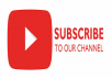 30 High quality youtube promotion and permanent with fastest delivery