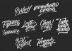 Signature Design or Logo Design in Brush lettering Style