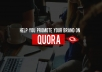 do effective Quora promotion for your brand or website